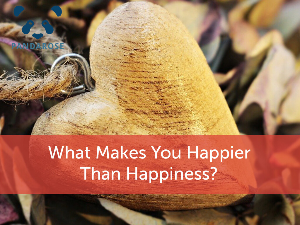 What makes you happier than happiness?