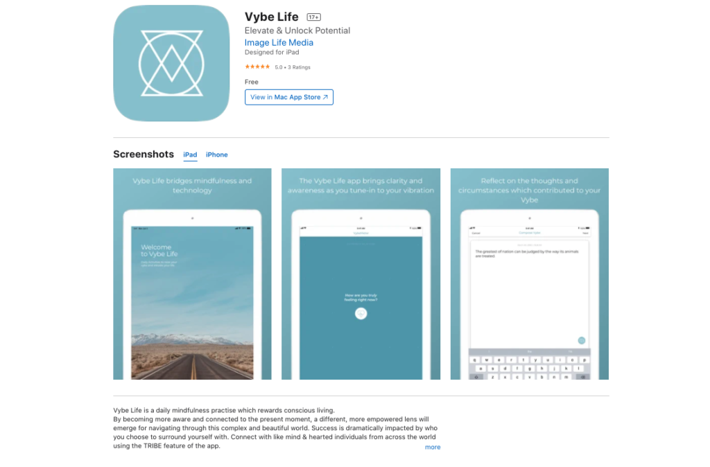 Vybe Life in the App Store